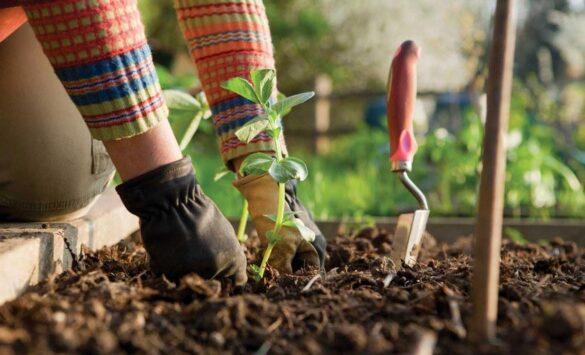 Leefregels duurzaam wonen