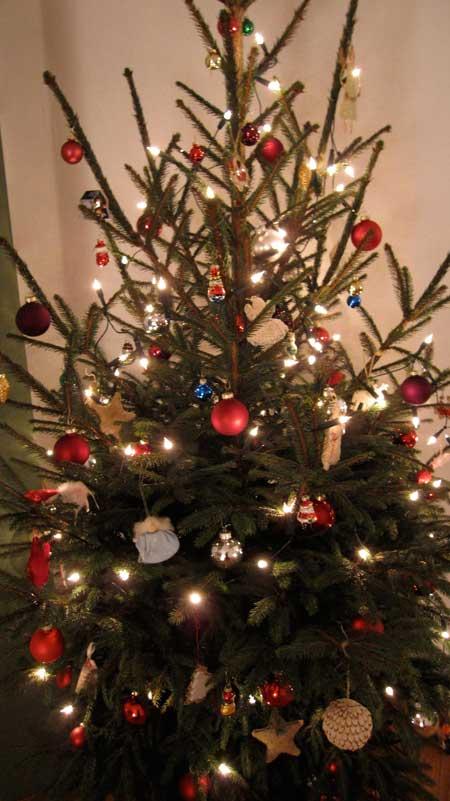 Echte kerstboom verslaat kunst kerstboom!
