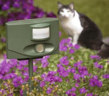Katten in de tuin weghouden