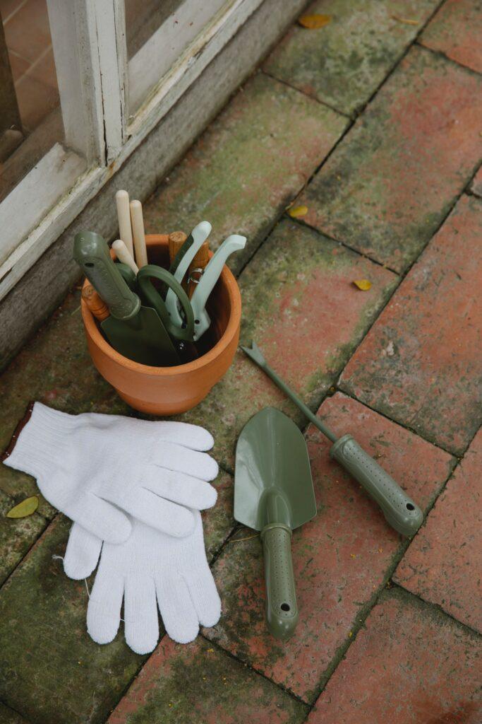 onkruid verwijderen zonder gif groene aanslag