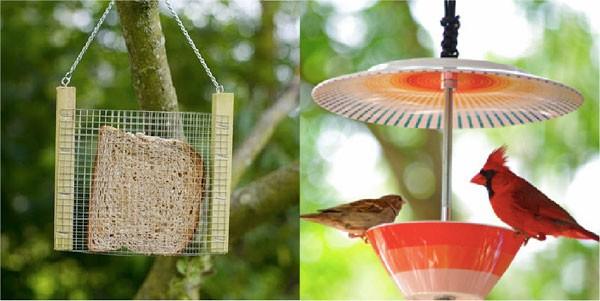 duurzame-voederplaats-vogels