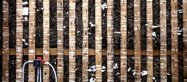 duurzame-zeewier-isolatie