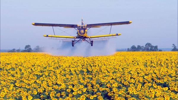 Vliegtuig boven bloemenveld milieuvervuiling