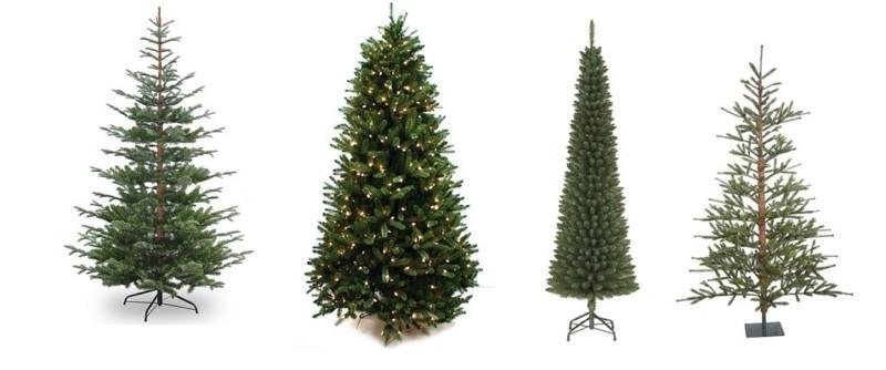 De kerstboom Echt of Nep? Wat is beter?