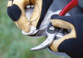 Duurzaam en natuurlijk tuingereedschap schoonmaken