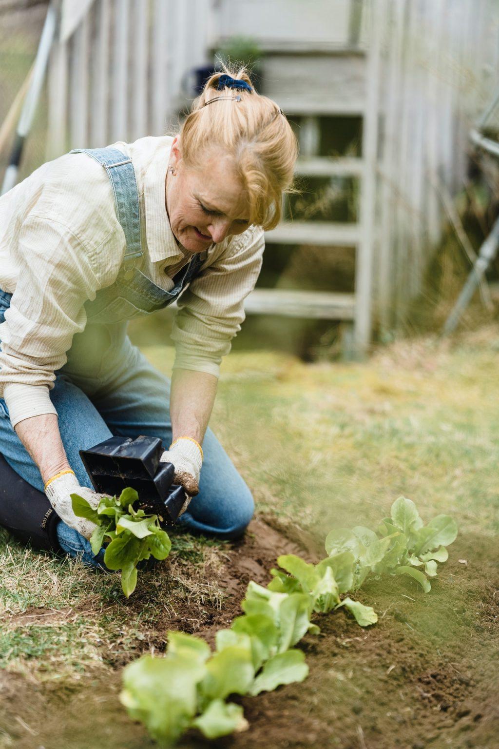 duurzame aanpassingen woning duurzame toekomst